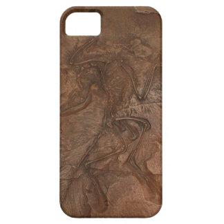 Fósil del Archaeopteryx - casamata iPhone 5 Case-Mate Cárcasas