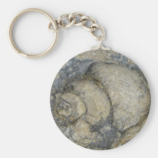 Fósil Llavero Redondo Tipo Pin