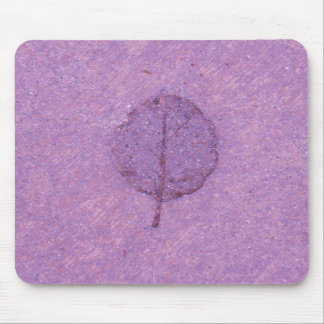 Fósil púrpura de la hoja tapete de raton