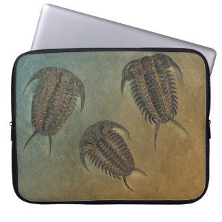 Fósil Trilobite de Ceraurus Funda Ordendadores