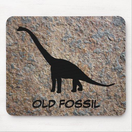 Fósil viejo del Brontosaurus del dinosaurio Tapete De Ratón