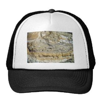 Fósiles de la raíz en malecón de la piedra caliza gorros bordados