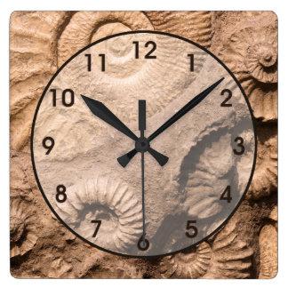 Fósiles de Shell Reloj Cuadrado