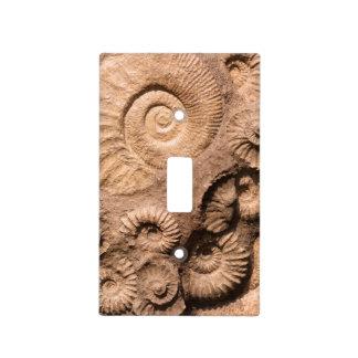 Fósiles de Shell Tapa Para Interruptor