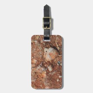 Fósiles fascinadores etiquetas para maletas