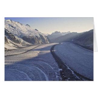 Foso de Juneau Icefield Gilkey (espacio en blanco  Felicitaciones