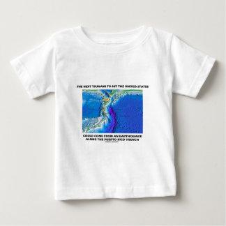 Foso de Puerto Rico del tsunami (tierra de la Playera De Bebé