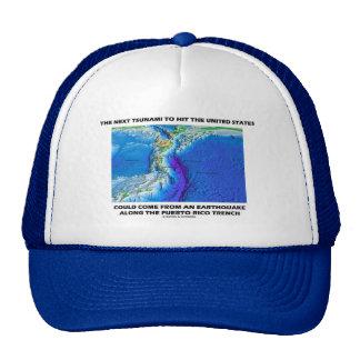 Foso de Puerto Rico del tsunami tierra de la tect Gorro
