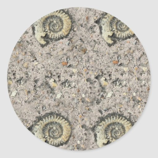 fossil background classic round sticker
