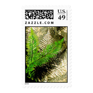 Fossil Fern Stamps