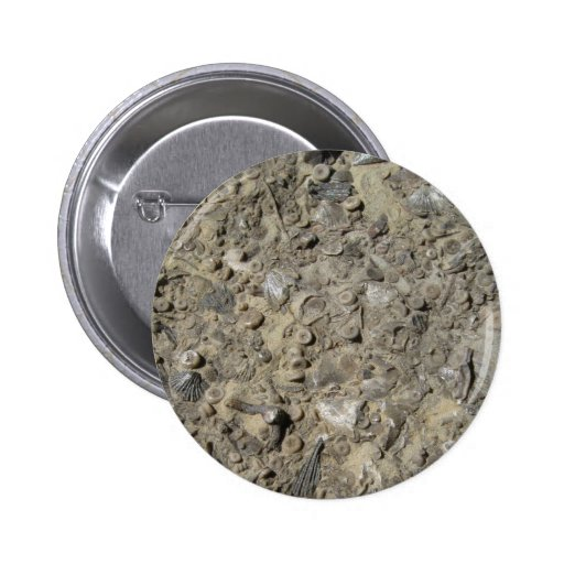 Fossil Hash Print 2 Inch Round Button