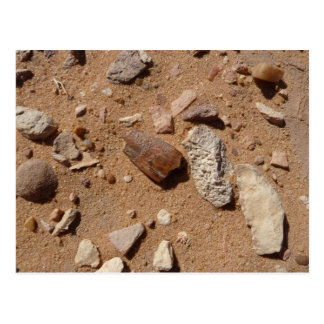 Fossil in the dessert postcard