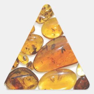 Fossil inclusions in Oligocene Dominican amber Triangle Sticker