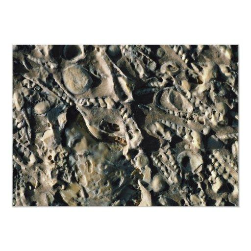 Fossil matrix, Mali, Africa 5x7 Paper Invitation Card