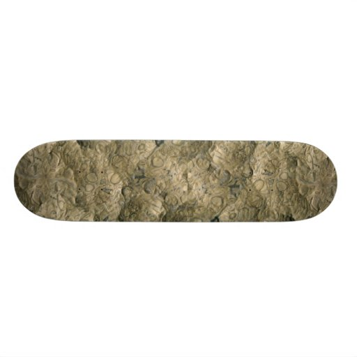 Fossil matrix, Mali, Africa Skate Board Deck