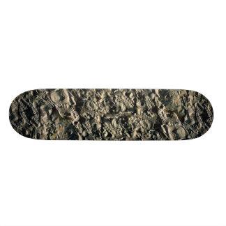 Fossil matrix Mali Africa Skate Board Deck