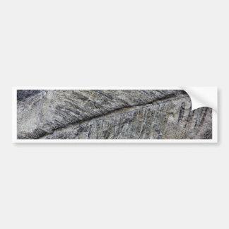 Fossil Plant Bumper Sticker