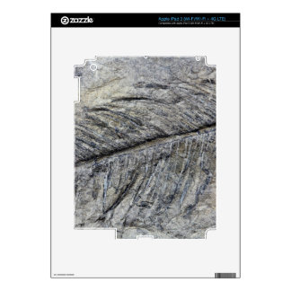 Fossil Plant iPad 3 Decals