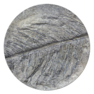Fossil Plant Melamine Plate