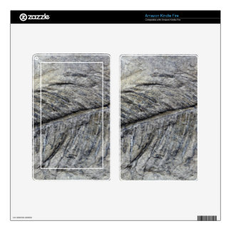 Fossil Plant Skin For Kindle Fire