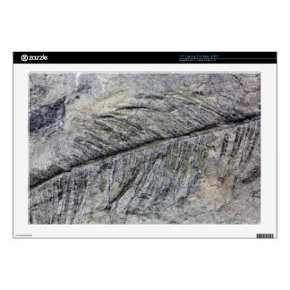 Fossil Plant Skins For Laptops