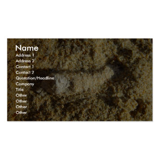 Fossil Root In Limestone At Wanneroo Beach Business Card Template