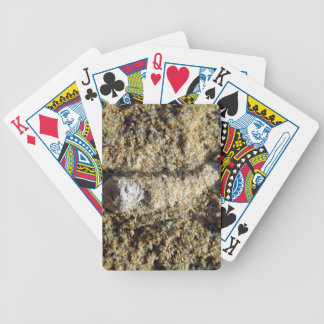 Fossil root in limestone bicycle playing cards