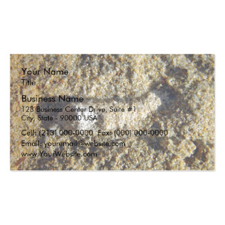 Fossil root in limestone business card template