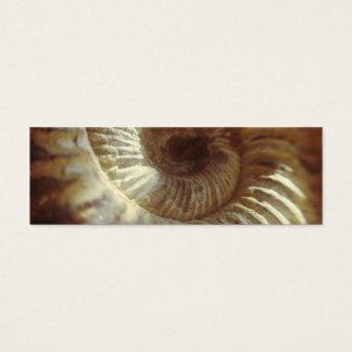 Fossil Sitting In Sun Light Mini Business Card