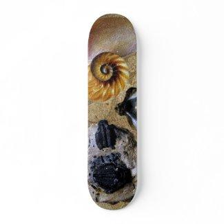 Fossil Skateboard skateboard