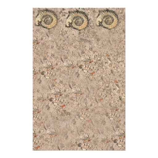 Fossil Stationery