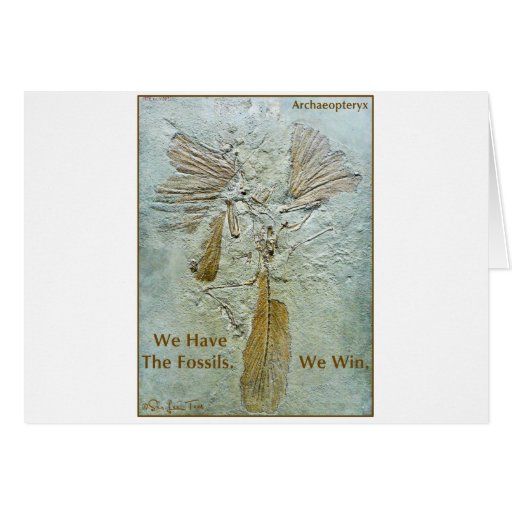 Fossil Win Archaeopteryx Greeting Cards