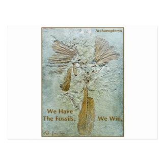 Fossil Win Archaeopteryx Postcard