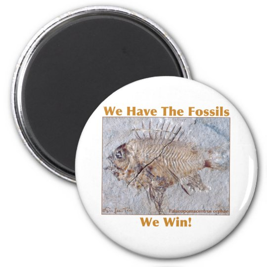 Fossil Win Magnet