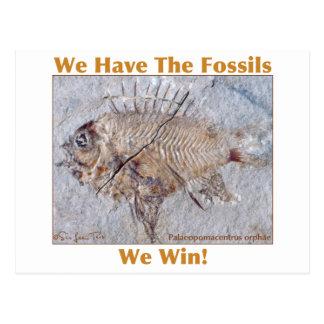 Fossil Win Postcard