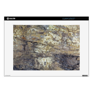 "Fossil Wood 15"" Laptop Skin"