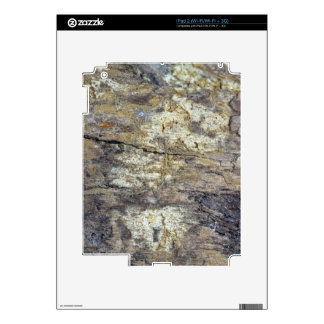 Fossil Wood Decal For iPad 2