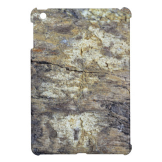 Fossil Wood iPad Mini Case