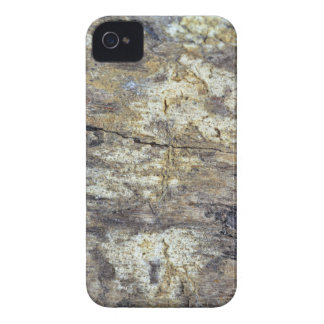 Fossil Wood iPhone 4 Cover