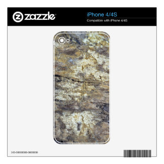 Fossil Wood iPhone 4 Decals