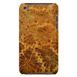 Fossilized coral natural jasper gemstone Case-Mate iPod touch case