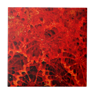 Fossilized coral red dyed stone ceramic tile