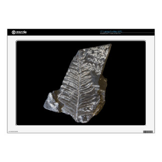 Fossilized Fern Leaves Photo on Black Decals For Laptops