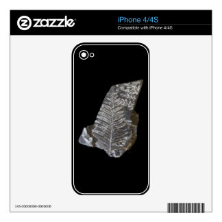 Fossilized Fern Leaves Photo on Black iPhone 4S Decal