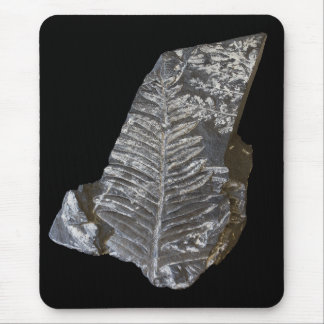 Fossilized Fern Leaves Photo on Black Mouse Pad