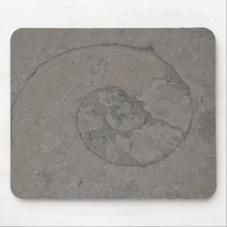 fossilized snail mouse pad