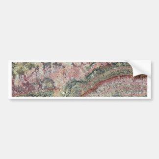 Fossilized Stromatolites Bumper Sticker