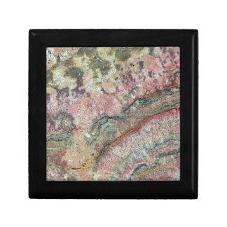 Fossilized Stromatolites Gift Box