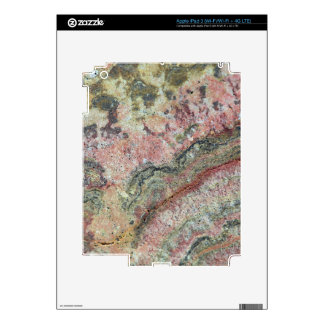 Fossilized Stromatolites iPad 3 Decal