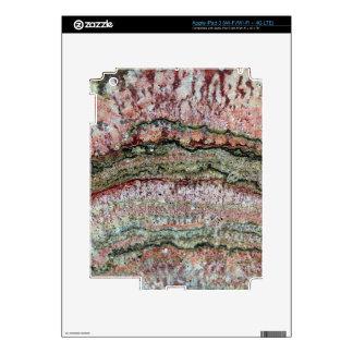 Fossilized Stromatolites iPad 3 Skin